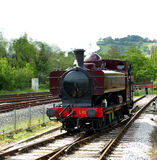 Tren en el totnesStation Fotografía de archivo libre de regalías