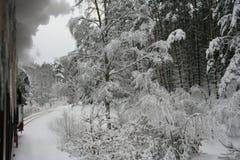 Tren en winterlandscape Fotos de archivo libres de regalías