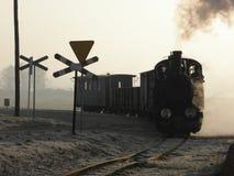 Tren ferroviario del vapor del indicador estrecho Foto de archivo libre de regalías
