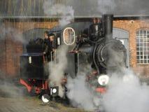 Tren ferroviario del vapor del indicador estrecho Imagenes de archivo