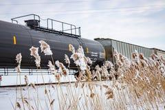 Tren ferroviario en invierno con Cattails congelados imagen de archivo libre de regalías