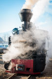 Tren histórico del vapor que pasa un pueblo rumano viejo Fotografía de archivo libre de regalías