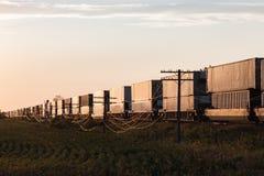 Tren largo del envase en la salida del sol en pradera canadiense fotografía de archivo libre de regalías