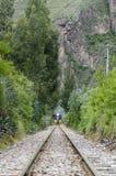 Tren a Machu Picchu de los Aguas Calientes Fotografía de archivo