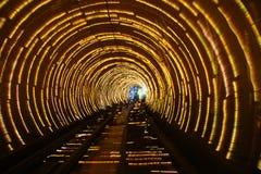 Tren que se mueve a través del túnel Imágenes de archivo libres de regalías