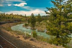 Tren que va abajo de vías cerca de un río Imágenes de archivo libres de regalías