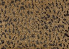 Brown leopard fabric pattern texture. Trend fashion fabric texture. Leopard animal print backdrop for art work royalty free stock photo