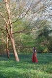 Trendig dam i ett engelskt trä med blåklockor och träd royaltyfri foto