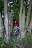 Trendig dam som sitter i ett bokträdträd fotografering för bildbyråer