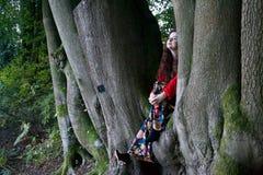 Trendig dam som sitter i ett bokträdträd arkivfoto
