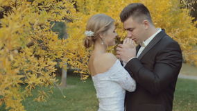 Trendy bride warm  hands of his graceful bride. In middle of a park with trees in yellow leaves stock footage