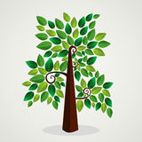 Trendy concept tree design Royalty Free Stock Photo