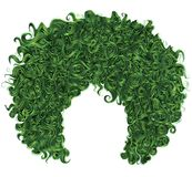 Trendy curly green hair . realistic 3d . spherical hairstyle . royalty free stock photos