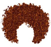 Trendy curly  red ginger hair  . realistic  3d . spherical hairs Royalty Free Stock Images