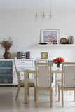 Trendy dining room Royalty Free Stock Image
