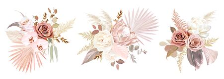 Free Trendy Dried Palm Leaves, Blush Pink And Rust Rose, Pale Protea Stock Photo - 204673860
