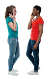 Trendy females speaking over cellphone Royalty Free Stock Image