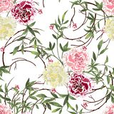 Background with flowers and leaves Royalty Free Stock Images