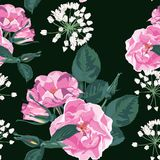 Trendy floral background with wild rose, rosa canina dog rose garden flowers. Hand drawn style on black backdrop. Royalty Free Stock Photos