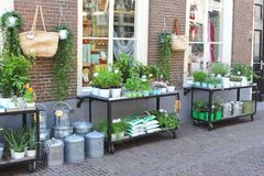 Trendy florist shop in the walled city of Amersfoort,Netherlands Royalty Free Stock Photos