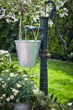 Trendy garden landscaping with vintage water pump. Trendy garden landscaping with galvanised pail hanging from a vintage water pump amidst spring flowers and a stock photography