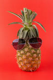 Trendy glasses summer pineapple wearing hipster style onred back Royalty Free Stock Image