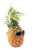 Trendy glasses summer pineapple wearing hipster style on white b Stock Images