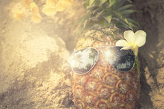Trendy glasses summer pineapple wearing hipster vintage style Royalty Free Stock Photography
