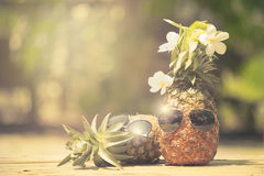 Trendy glasses summer pineapple wearing hipster vintage style Stock Photos