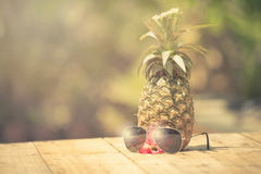 Trendy glasses summer pineapple wearing hipster vintage style Stock Images