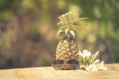 Trendy glasses summer pineapple wearing hipster vintage style Royalty Free Stock Image