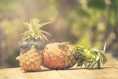 Trendy glasses summer pineapple wearing hipster vintage style Stock Photography