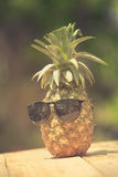 Trendy glasses summer pineapple wearing hipster vintage style Royalty Free Stock Photos