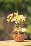 Trendy glasses summer pineapple wearing hipster vintage style Stock Photo