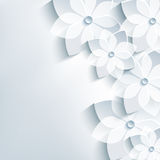 Trendy gray background with 3d flowers sakura Stock Images