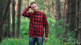 Trendy guy in the pine forest Royalty Free Stock Image