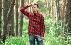 Trendy guy in the pine forest Stock Photography