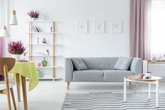 Interior design with comfortable scandinavian couch, wooden coffee table, striped rug and graphics on the floor, real photo. Trendy interior design with royalty free stock images