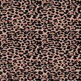 Trendy Leopard or cheetah skin seamless pattern, animal fur back Stock Photography