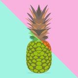 Trendy pineapple Stock Photography