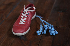 Trendy red sport shoes. With flower Stock Photos