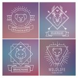 Trendy Retro Vintage Insignias Bundle. Animals Stock Photography