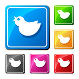 Trendy round blue twitter bird. Social media web icon. Flat desi Stock Image