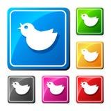 Trendy round blue twitter bird. Social media web icon. Flat desi. Gn Stock Image