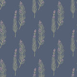 Trendy  seamless pattern with forest plants, leaves,, seeds and cones. Royalty Free Stock Photography