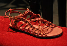 Trendy summer female sandals Stock Image