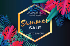 Trendy Summer Sale Template banner. Paper art Tropical palm leaves, plants. Exotic. Hawaiian. Space for text. Hexagon Stock Photo