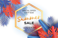 Trendy Summer Sale Template banner. Paper art Tropical palm leaves, plants. Exotic. Hawaiian. Space for text. Hexagon Royalty Free Stock Photography