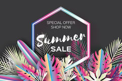 Trendy Summer Sale Template banner. Paper art Tropical palm leaves, plants. Exotic. Hawaiian. Space for text. Hexagon Stock Image