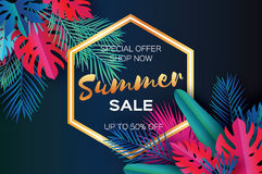 Trendy Summer Sale Template banner. Paper art Tropical palm leaves, plants. Exotic. Hawaiian. Space for text. Hexagon Royalty Free Stock Photo
